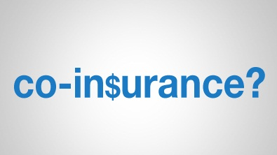 What is Co Insurance?